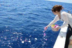 散骨の方法は海であればどこでも良い?