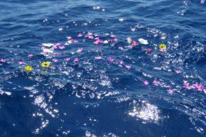 海や大地に撒く「散骨」